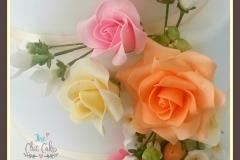 roses-peachedited