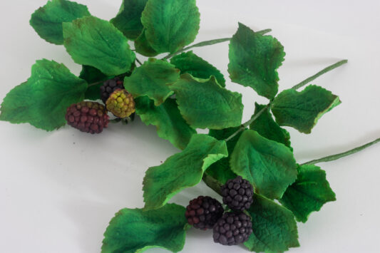 Sugar blackcurrants